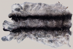 Tintura di pellicce