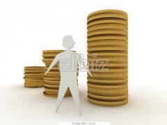 Консультации по вопросам бухгалтерского, налогового, гражданского, хозяйственного, трудового законодательства.
