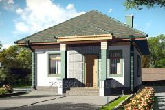 Строительство одноэтажных монолитных домов и коттеджей под ключ