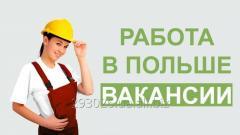 Рабочие в Польшу и Чехию