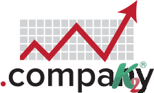 Регистрация домена company