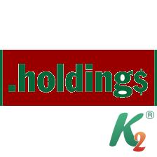 Регистрация домена holdings