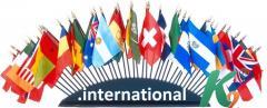 Регистрация домена international