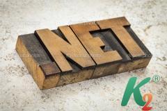 Регистрация домена net