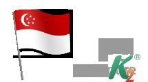 Регистрация домена sg