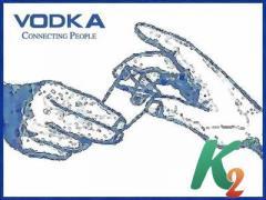 Регистрация домена vodka
