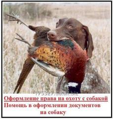 Документы для охотничьих собак — решаем вопросы с оформлением