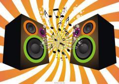 Музыкальное оформление банкета . Профессиональные услуги диджея