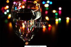 Диджей на Новый год .профессиональное озвучивание