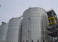 Construction of facilities of grain-processing industry
