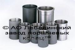 Послуги лиття сталі й чавуну