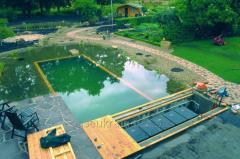 Сервисное обслуживание фонтанов, биопрудов и бассейнов