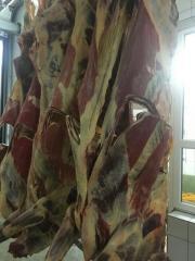 Мясо говядины первой категории полутуша