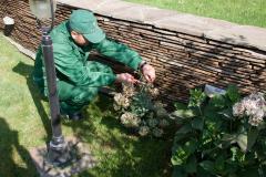 Уход за садом, Услуги садовника