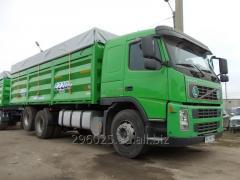 Перевозка зерновых грузовыми автомобилями - зерновозами