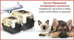 Срочное Оформление ветеринарных документов от 1
