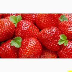 Купуємо полуницю.