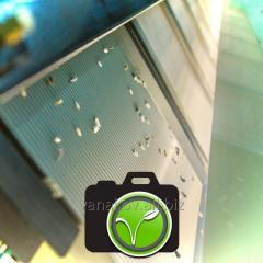 Очистка зерна фотосортексом