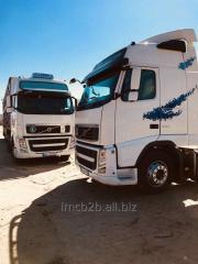 Livestok / cattele transport