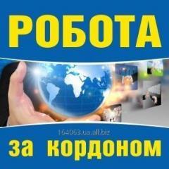 Легальная работа в Польше по визе и безвизу