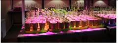 5 ЭЛЕМЕНТ-прирост урожая,повышение качества урожая,имунизации ,засухо и морозоустойчивость,улучшение физико-механического состояния почвы
