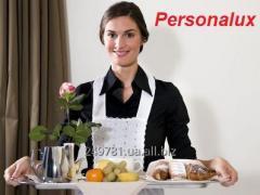 Домработница - помощница по дому