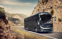 Перевезення пасажирські автомобільним транспортом