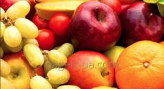 Storage of fruits in refrigerators of 22 tons to