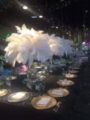 Оформление корпоративов и свадеб перьями страуса.