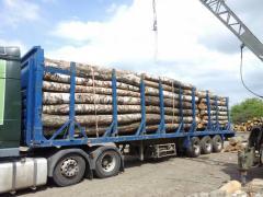 Перевезення деревини