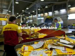 Рабочие для разгрузки, сортировки, упаковки посылок в компании «DHL»