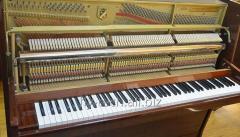 Настройка пианино, консультация при покупке б/у пианино.