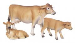 Приплод Коров