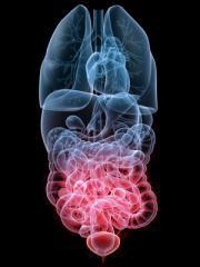 Магнитно-резонансная томография органов малого таза