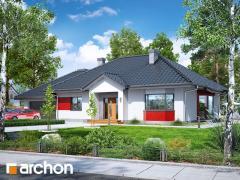 Проект Дом в гаурах (Г2Н)