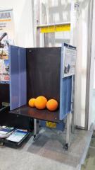 АРЕНДА грузового строительного подъемника GEDA Lift 250 Comfort