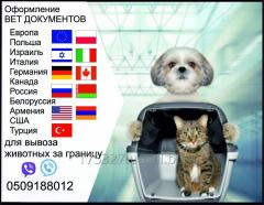 Тест на бешенство Справка собаки выезд за границу
