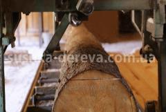 Сушіння деревини