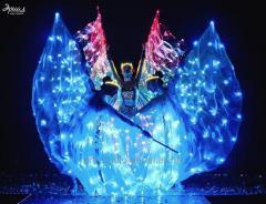 Шоу световых бабочек (трио)   Light show Одесса   LED wings, световое шоу в Одессе