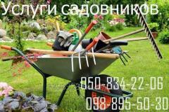 Предлагаем полный комплекс услуг по уходу за садом
