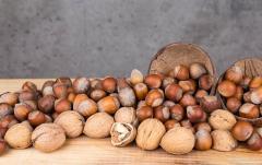 Сортировка ядер грецкого ореха и фундука по размеру
