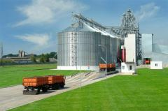Construction of elevators, grain terminals,