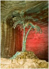 Экскурсии в соляные шахты