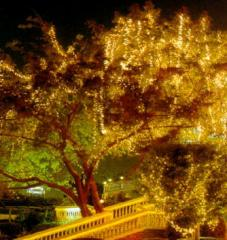 Decorative illumination of reservoirs