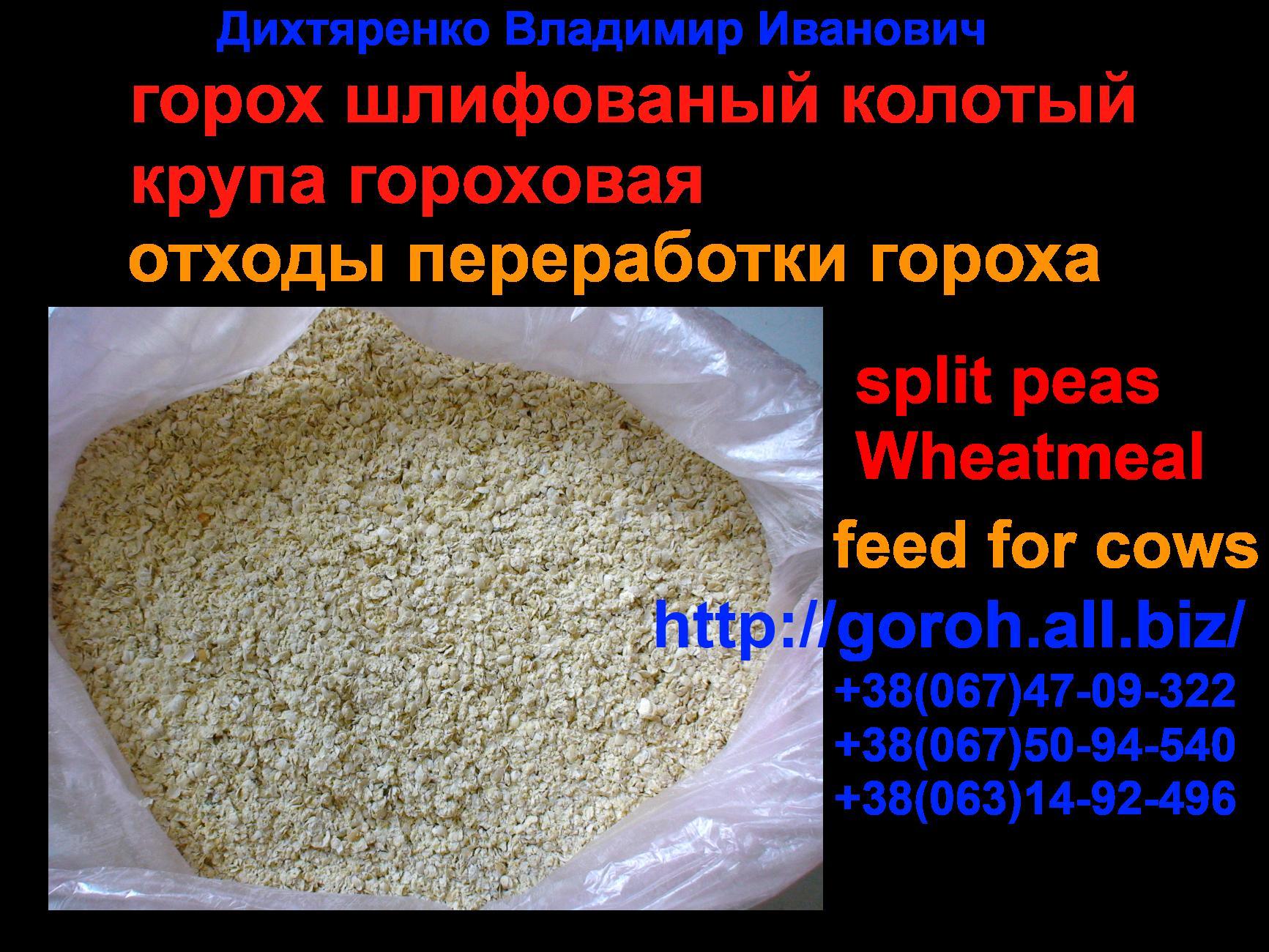 pererabotka_goroha_produkcziya_pererabotki_goroha_muka_gorohovaya_krupa_gorohovaya