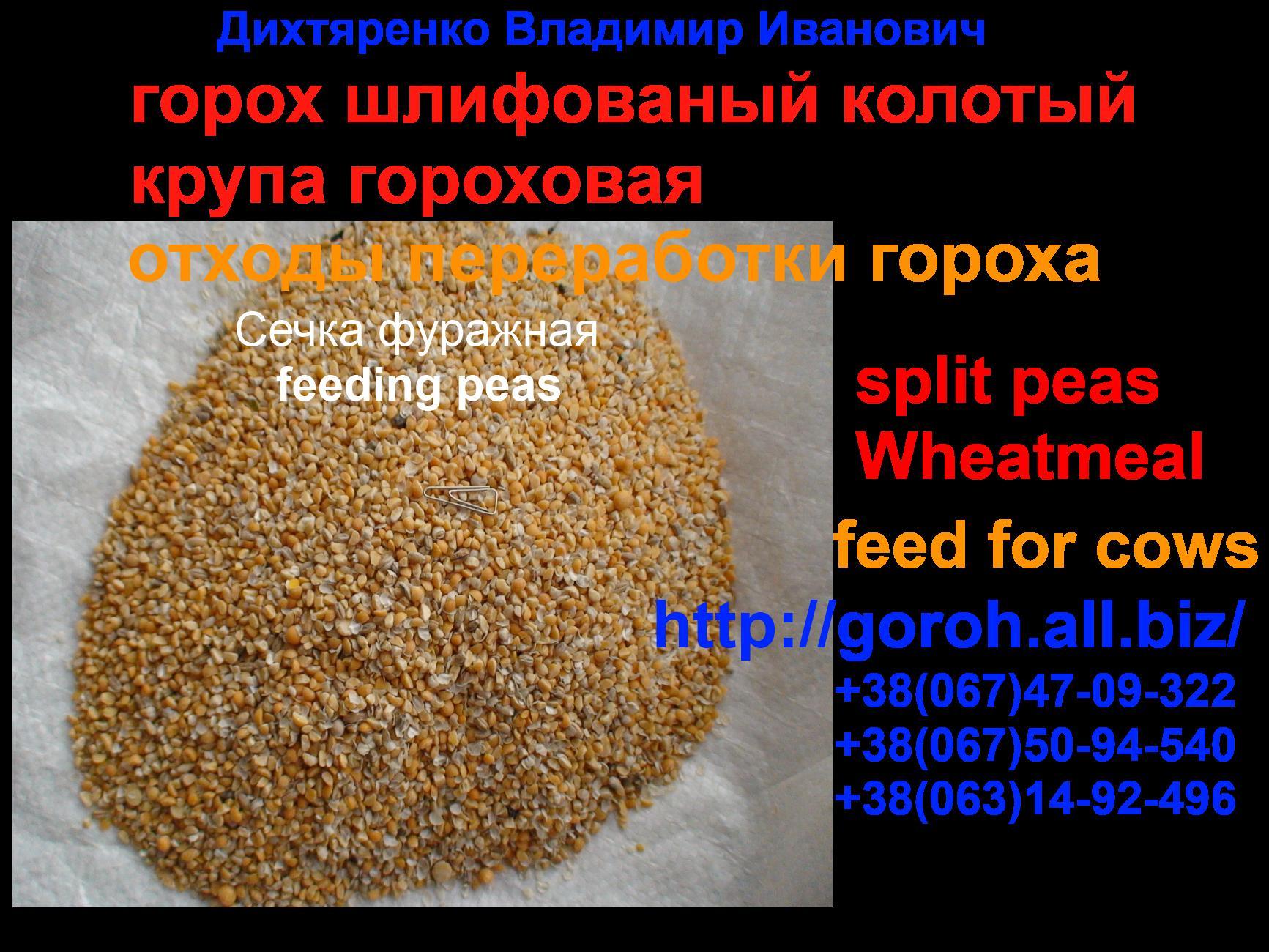 eksport_zernovyh_podgotovka_dokumentov_na_eksport_sertifikat_kachestva_eksportnye_dokumenty
