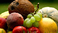 Поставка овощей и фруктов