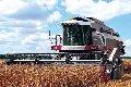 Услуги по уборке зерновыми комбайнами