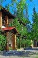Отель «У Челентано» (Курорт)