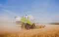 Уборка урожая, зерновых комбайнами